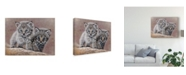 "Trademark Global Pip Mcgarry Bobcat Babies Canvas Art - 20"" x 25"""