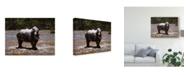"Trademark Global Pip Mcgarry White Rhino Canvas Art - 15"" x 20"""