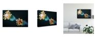 "Trademark Global Pixie Pics Macro Flower Heads Canvas Art - 20"" x 25"""
