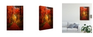 "Trademark Global Philippe Sainte-Laudy Forest Garden Canvas Art - 15"" x 20"""