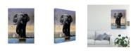 "Trademark Global Pip Mcgarry Elephant, Egret and Carmines Canvas Art - 15"" x 20"""