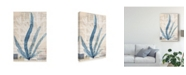 "Trademark Global Vision Studio Seaweed Arrangement II Canvas Art - 37"" x 49"""