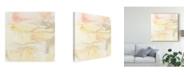"Trademark Global June Erica Vess Mesa Sunrise I Canvas Art - 15"" x 20"""