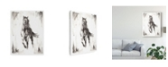 "Trademark Global Ethan Harper Rustic Black Stallion II Canvas Art - 20"" x 25"""