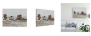 "Trademark Global Ethan Harper Snow Covered Hillside I Canvas Art - 15"" x 20"""