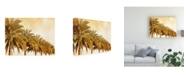 "Trademark Global Skip Nall Palms on Brown I Canvas Art - 20"" x 25"""