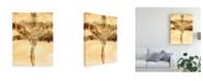 "Trademark Global Skip Nall Palms on Brown IV Canvas Art - 15"" x 20"""