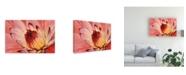 "Trademark Global Tim Otoole Micro Floral I Canvas Art - 15"" x 20"""