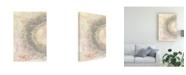 "Trademark Global Naomi Mccavitt Crystal Vision I Canvas Art - 20"" x 25"""