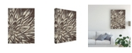 "Trademark Global June Erica Vess Barnwood Blossom II Canvas Art - 15"" x 20"""