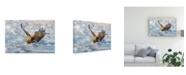"Trademark Global C Mei Coming Canvas Art - 20"" x 25"""