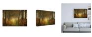 "Trademark Global Saskia Dingemans Dream Forest Canvas Art - 15.5"" x 21"""