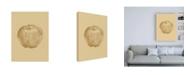 """Trademark Global Design Fabrikken Botanica 4 Fabrikken Canvas Art - 27"""" x 33.5"""""""