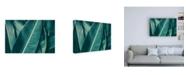 "Trademark Global PhotoINC Studio Banana Green Leaves Canvas Art - 36.5"" x 48"""
