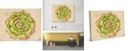 "Creative Gallery Joyous Succulent Cactus Watercolor 24"" x 20"" Canvas Wall Art Print"
