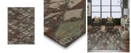 Karastan Elements Finley Denim 2' x 3' Area Rug