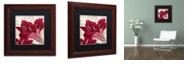 "Trademark Global Color Bakery 'Amaryllis ' Matted Framed Art, 11"" x 11"""