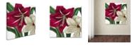 "Trademark Global Color Bakery 'Christmas Amaryllis I' Canvas Art, 14"" x 14"""