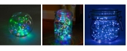 JH Specialties Inc/Lumabase Lumabase Set of 6, 120 Battery Operated LED Fairy String Lights