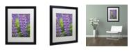 "Trademark Global Cora Niele 'Blue Violet Lupine Flower' Matted Framed Art - 16"" x 20"" x 0.5"""