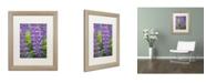 "Trademark Global Cora Niele 'Blue Violet Lupine Flower' Matted Framed Art - 20"" x 16"" x 0.5"""