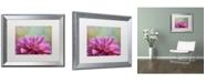 """Trademark Global Cora Niele 'Dahlia Petals' Matted Framed Art - 20"""" x 16"""" x 0.5"""""""