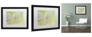 "Trademark Global Cora Niele 'Dewy Dandelion' Matted Framed Art - 16"" x 20"" x 0.5"""