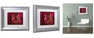 "Trademark Global Cora Niele 'Glowing Ruby Red Ranunculus' Matted Framed Art - 14"" x 11"" x 0.5"""