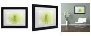 "Trademark Global Cora Niele 'Lime Light Spider Mum' Matted Framed Art - 11"" x 14"" x 0.5"""