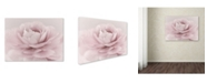 "Trademark Global Cora Niele 'Stylisch Rose Pink' Canvas Art - 47"" x 35"" x 2"""