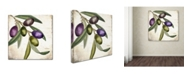 """Trademark Global Color Bakery 'Olive Branch I' Canvas Art - 24"""" x 2"""" x 24"""""""
