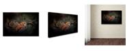 "Trademark Global Jai Johnson 'After The Acorns Fall' Canvas Art - 19"" x 12"" x 2"""