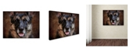 "Trademark Global Jai Johnson 'German Shepherd Face' Canvas Art - 19"" x 14"" x 2"""