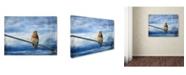 "Trademark Global Jai Johnson 'Heavenly Song Of The Bluebird' Canvas Art - 32"" x 24"" x 2"""