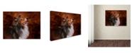 "Trademark Global Jai Johnson 'Shetland Sheepdog' Canvas Art - 47"" x 35"" x 2"""