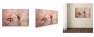 "Trademark Global Jai Johnson 'Cherry Blossom' Canvas Art - 47"" x 30"" x 2"""