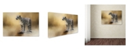 "Trademark Global Jai Johnson 'Snow Leopard' Canvas Art - 32"" x 22"" x 2"""