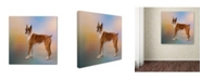 "Trademark Global Jai Johnson 'Boxer On A Beautiful Day' Canvas Art - 14"" x 14"" x 2"""