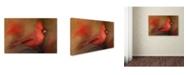 "Trademark Global Jai Johnson 'America's Favorite Red Bird' Canvas Art - 32"" x 22"" x 2"""