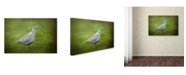 "Trademark Global Jai Johnson 'Spring Dove' Canvas Art - 32"" x 22"" x 2"""