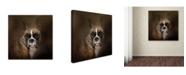 "Trademark Global Jai Johnson 'Curious Boxer' Canvas Art - 14"" x 14"" x 2"""