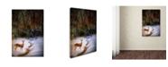 "Trademark Global Jai Johnson 'Buck At Snowy Creek' Canvas Art - 24"" x 16"" x 2"""