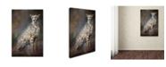 "Trademark Global Jai Johnson 'Patience' Canvas Art - 47"" x 30"" x 2"""
