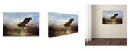 "Trademark Global Jai Johnson 'Dramatic Entrance' Canvas Art - 24"" x 16"" x 2"""