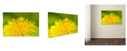 "Trademark Global Cora Niele 'Hellow Sunshine' Canvas Art - 32"" x 22"" x 2"""