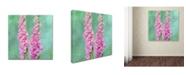 """Trademark Global Cora Niele 'Foxgloves' Canvas Art - 24"""" x 24"""" x 2"""""""