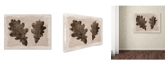 """Trademark Global Cora Niele 'Sepia Oak Leaves' Canvas Art - 47"""" x 35"""" x 2"""""""