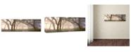 "Trademark Global Doug Cavanah 'Dawns Early Light' Canvas Art - 19"" x 6"" x 2"""