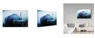 "Trademark Global Danna Sladjana 'Pigeon' Canvas Art - 24"" x 2"" x 16"""