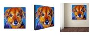 "Trademark Global DawgArt 'Riley Square' Canvas Art - 14"" x 14"" x 2"""